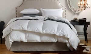 We Sanitize Your Favorite Pillows and Down Comforters